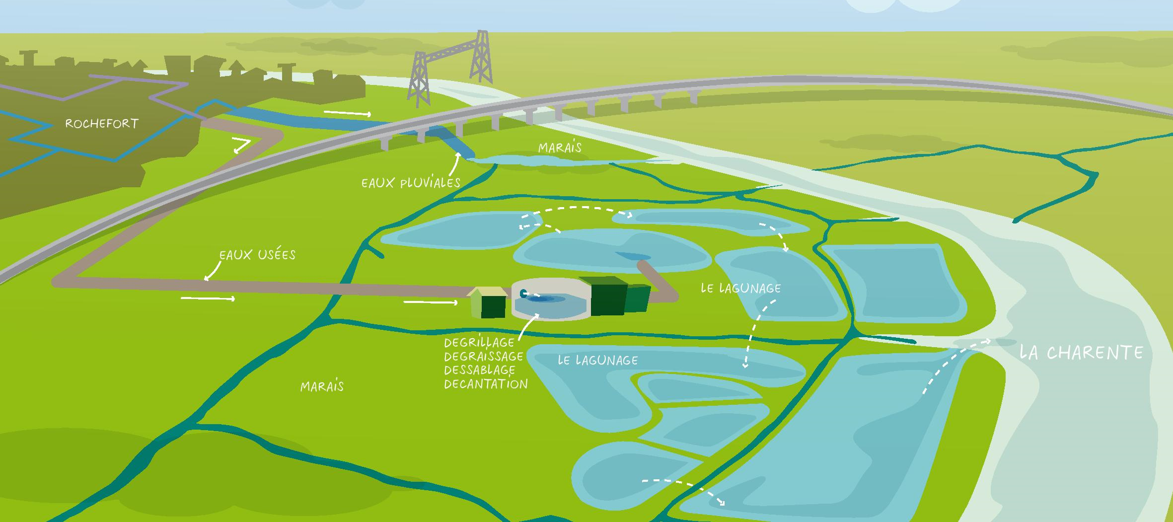Le petit cycle de l 39 eau ville de rochefort - Lagunage des eaux usees ...